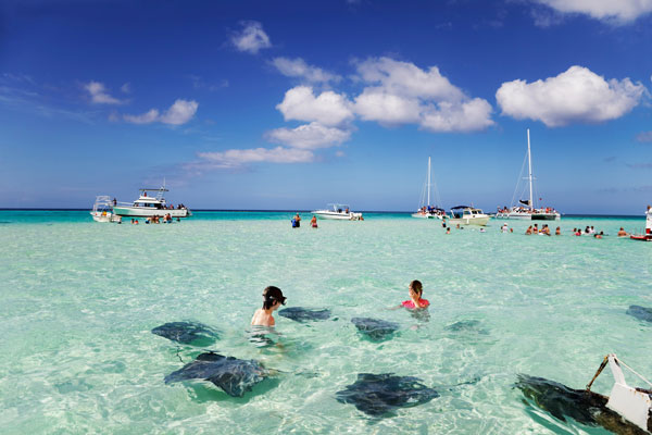 Swimming with the Stingrays in the Cayman Islands
